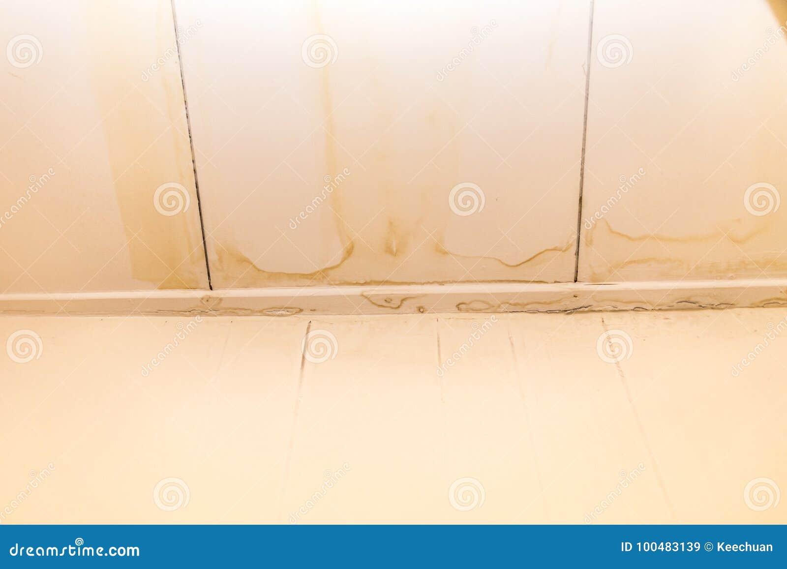 Couvrez la marque d eau laide de résultats de fuites sur le plafond