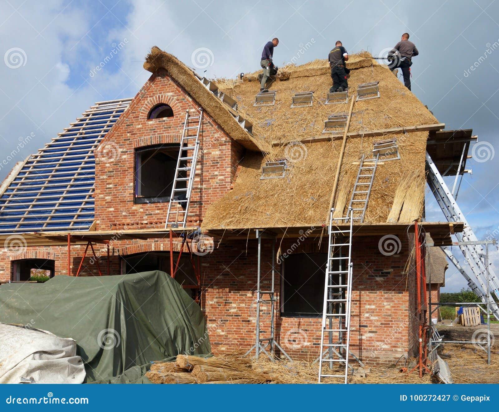 Couvrir Un Toit couvrir un toit de chaume sur l'île de foehr photographie éditorial