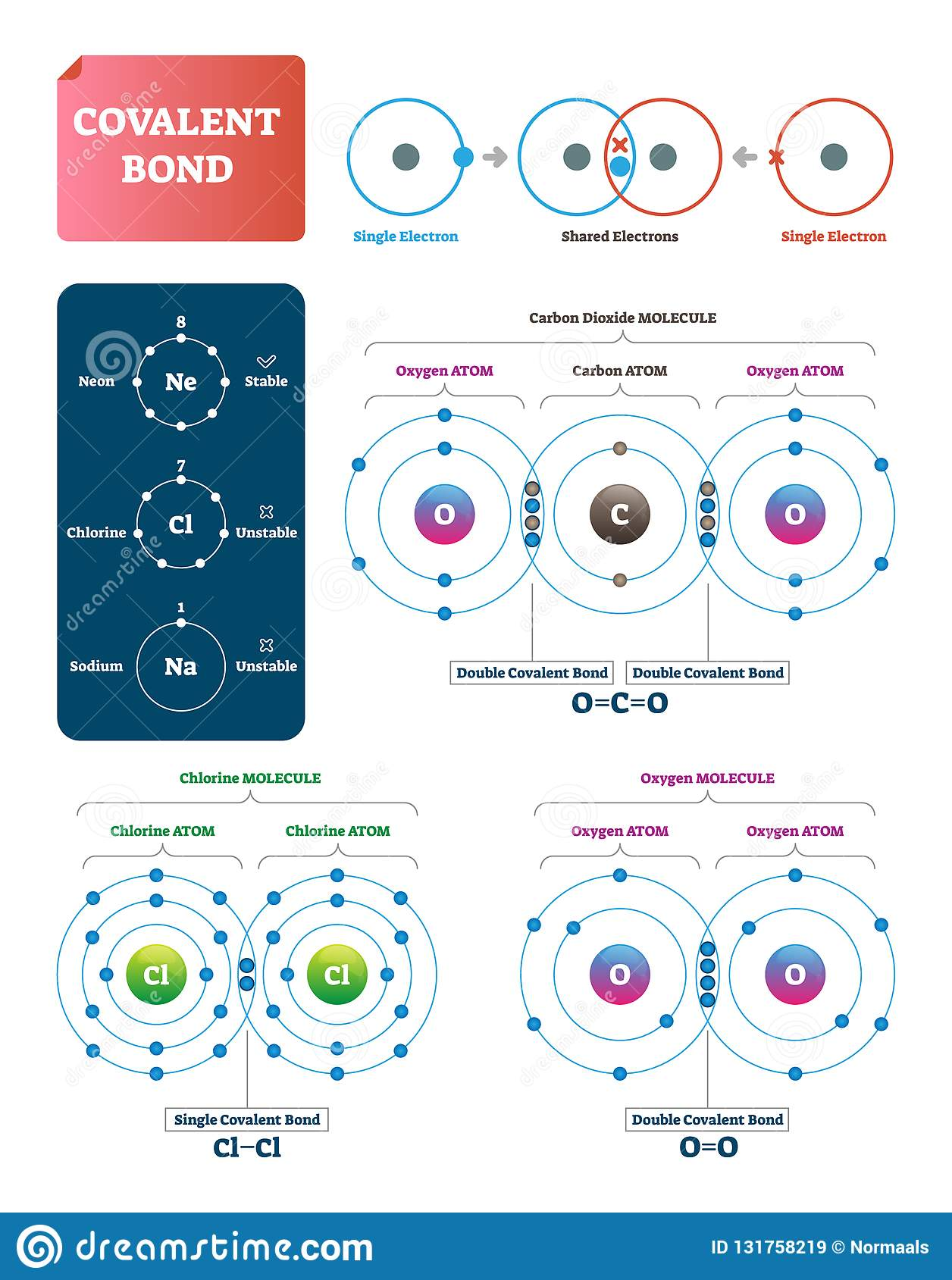 Covalent Bond Vector Illustration  Explanation And Example Labeled Diagram  Stock Vector