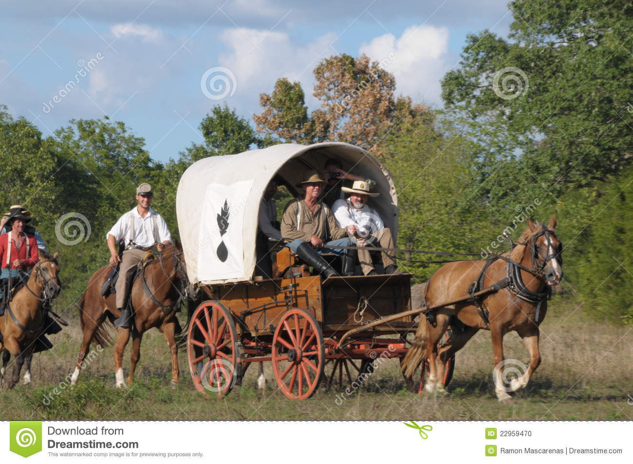 Covered Wagon in civil war reenactment. MO, Wilson Creek commemorate ...