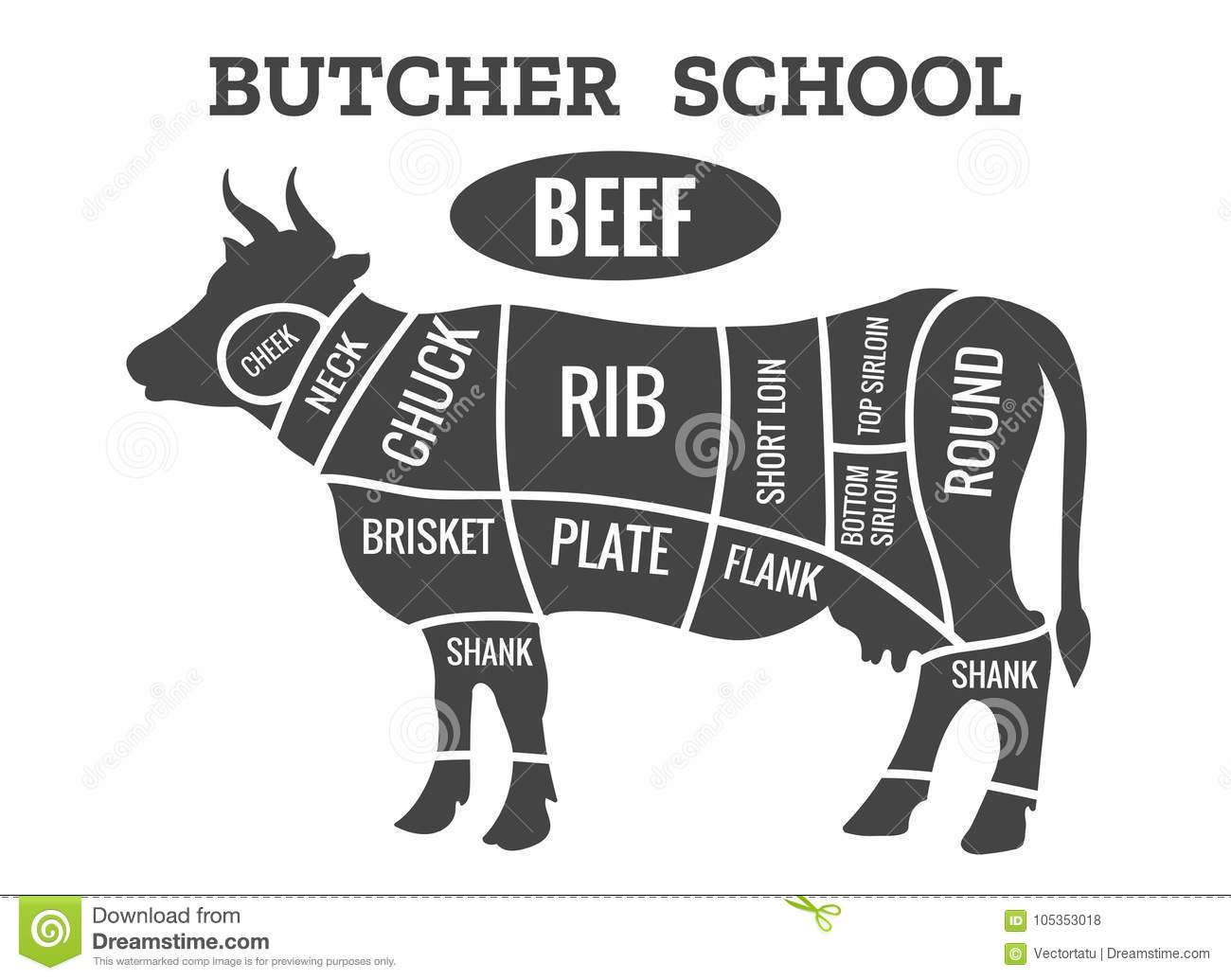 beef diagram cow beef diagram cow butcher diagram stock vector. illustration of meat ... #5