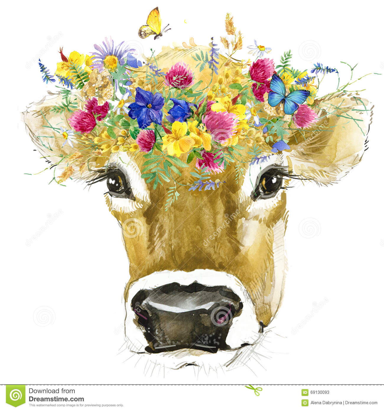 cow cow watercolor illustration milking cow breed stock