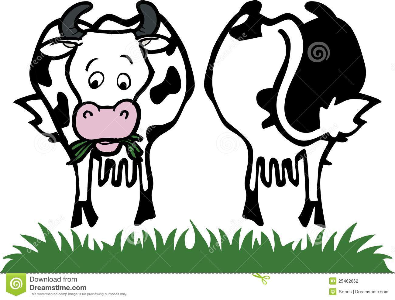 image representing a cow front and back isolated on white vector