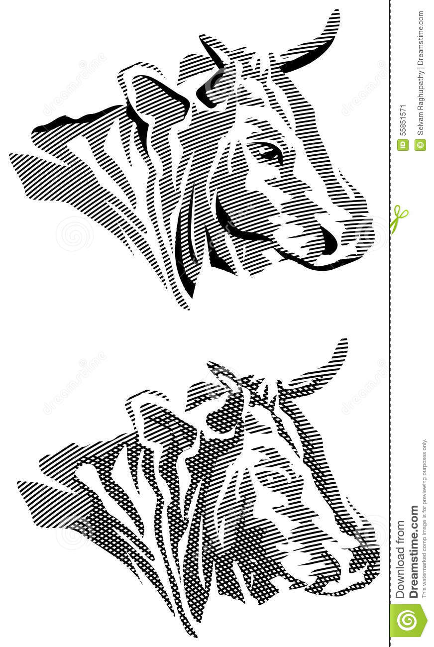 Line Drawing Cow Face : Cow head line drawing
