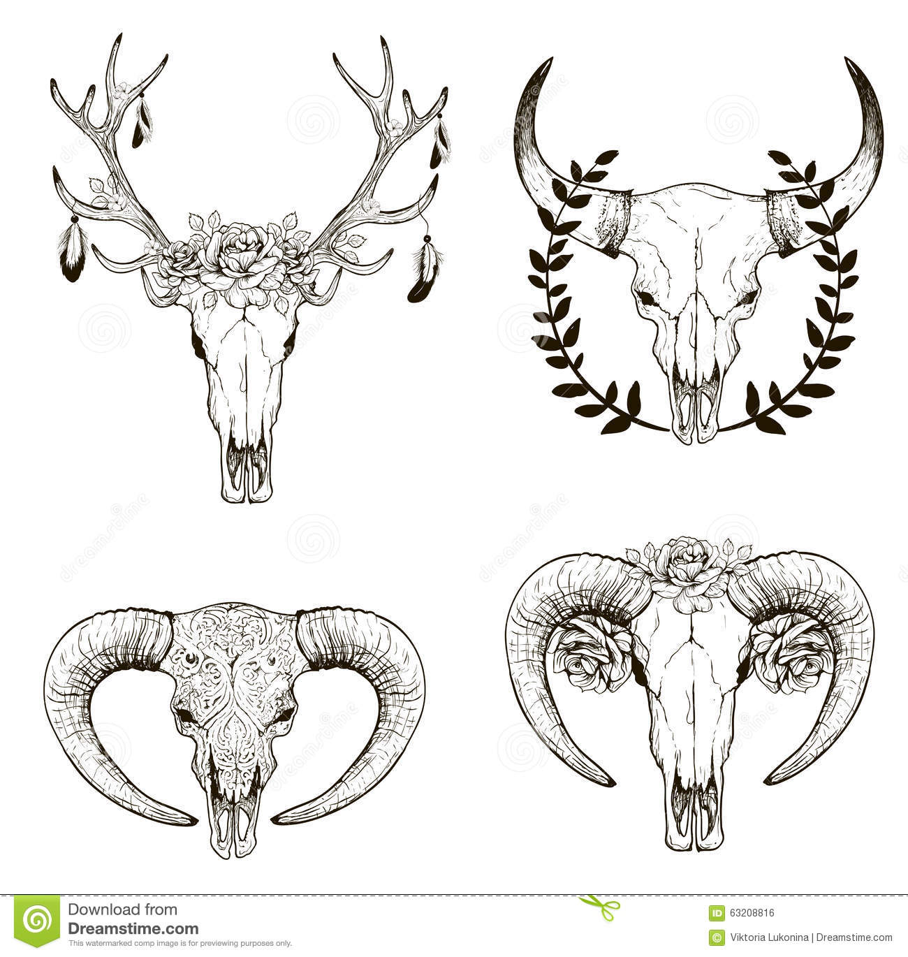 Spur Art Design Your Line : Cow skull collection stock vector illustration of design