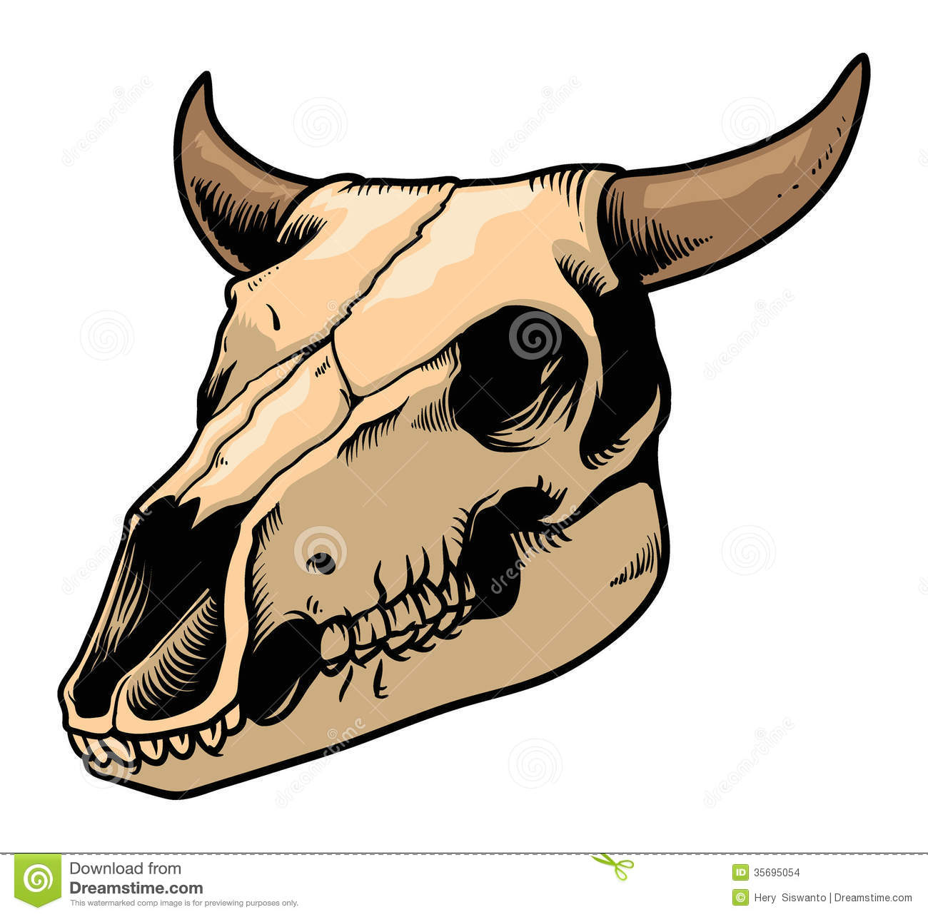 Cow skull stock vector. Illustration of experiment ...