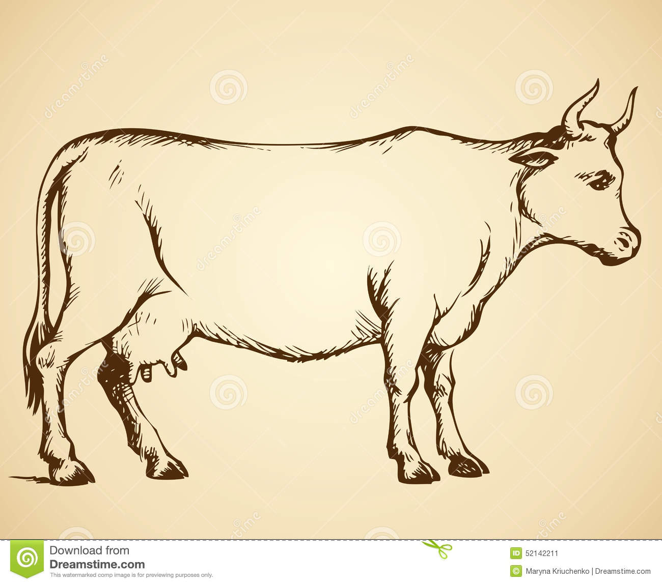 Download Cow Vector Drawing Stock Illustration Of Cattle
