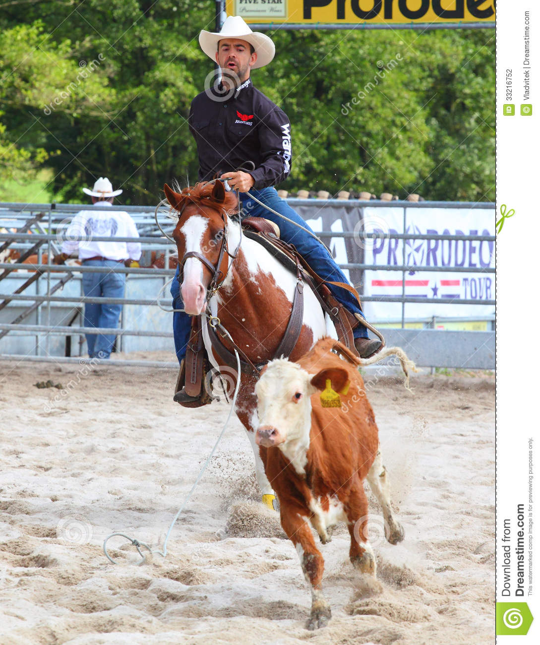 The Cowboy In A Calf Roping Competition Editorial