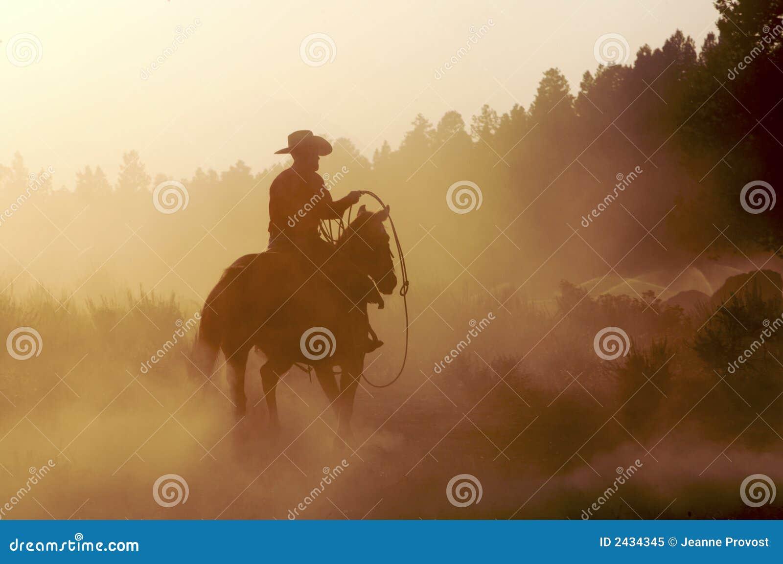 Cowboy dans la poussière