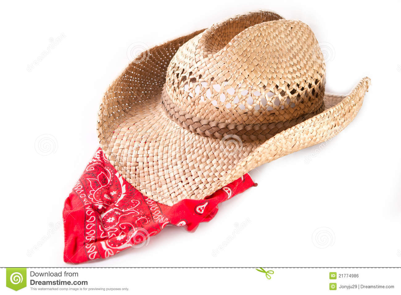 Cowboy hat and bandana stock photo. Image of country - 21774986 ed3c7533b17