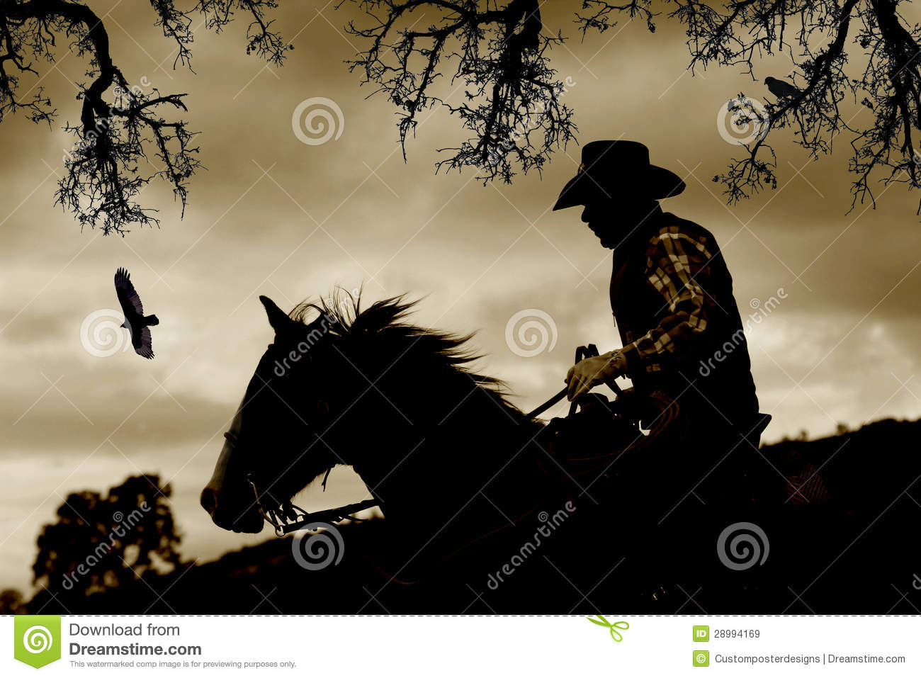 A cowboy, horse and birds in sepia.