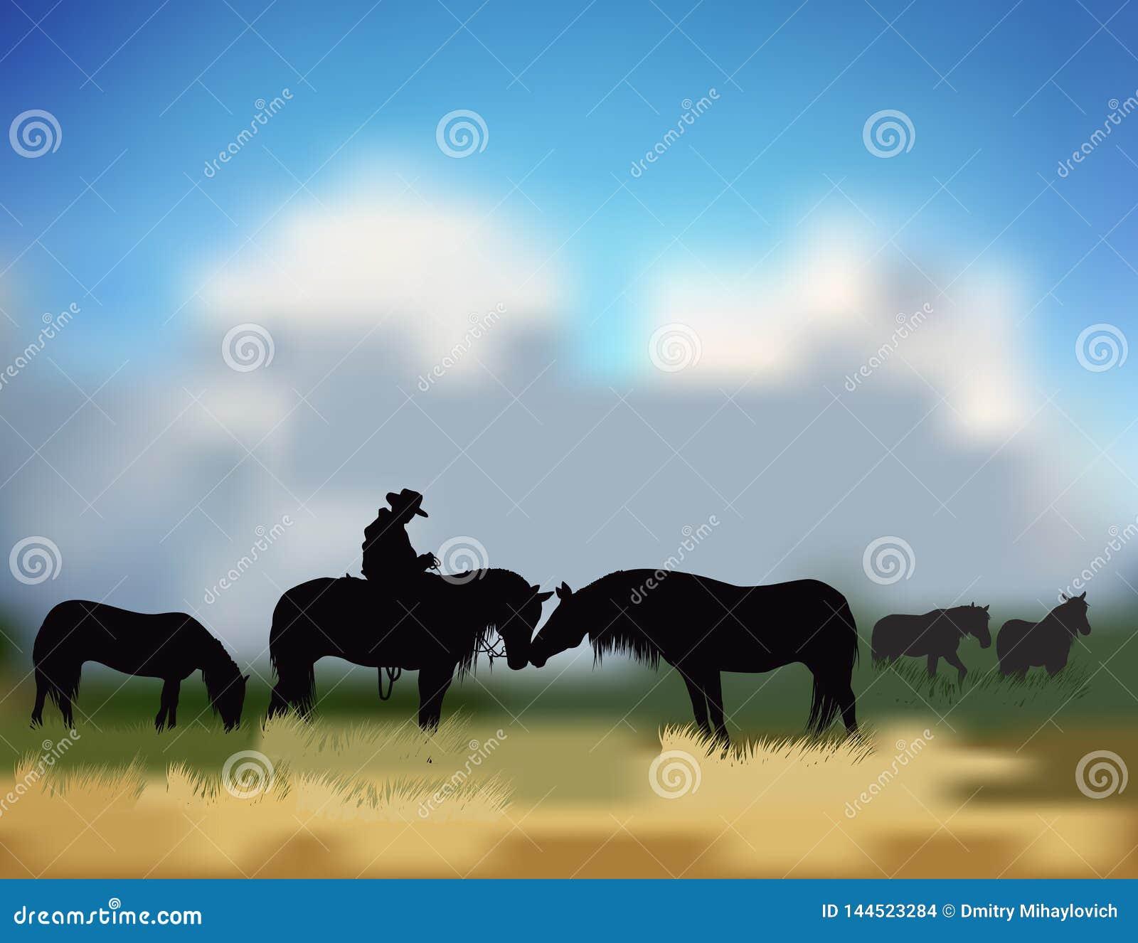 Cowboy op de prairie