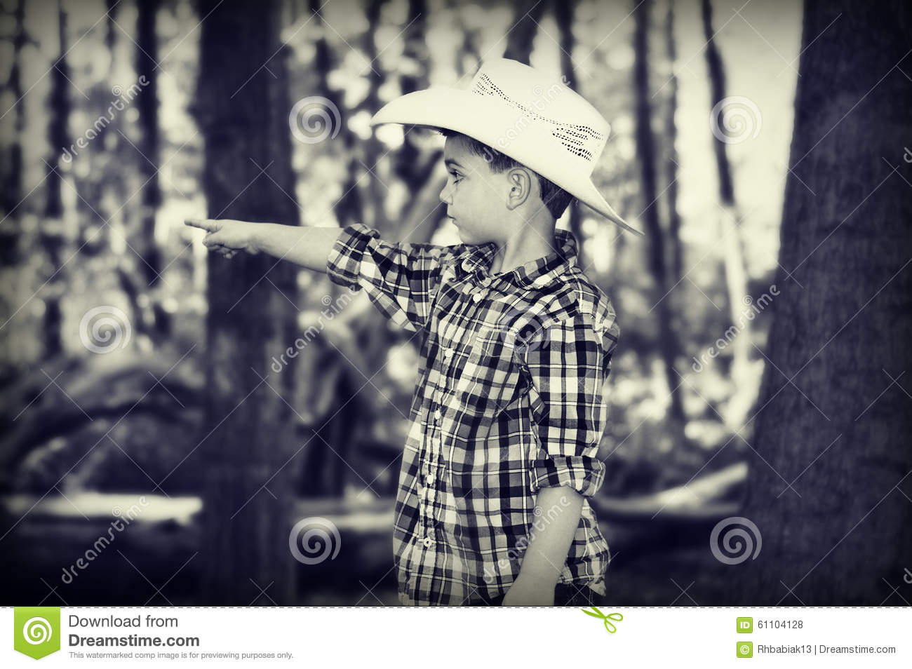 Cowboy Pointing