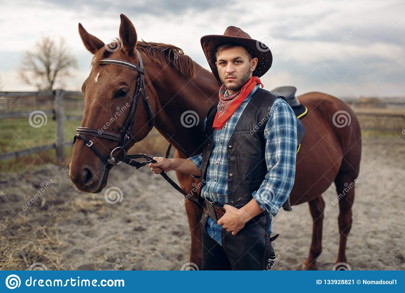 Cowboy Poses With Horse On Texas Farm Stock Image Image Of American People 133928821