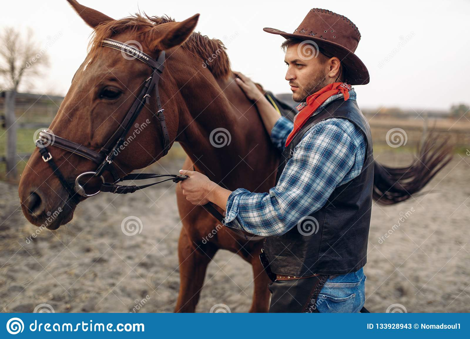 Cowboy Poses With Horse On Texas Ranch Wild West Stock Image Image Of Person Ride 133928943