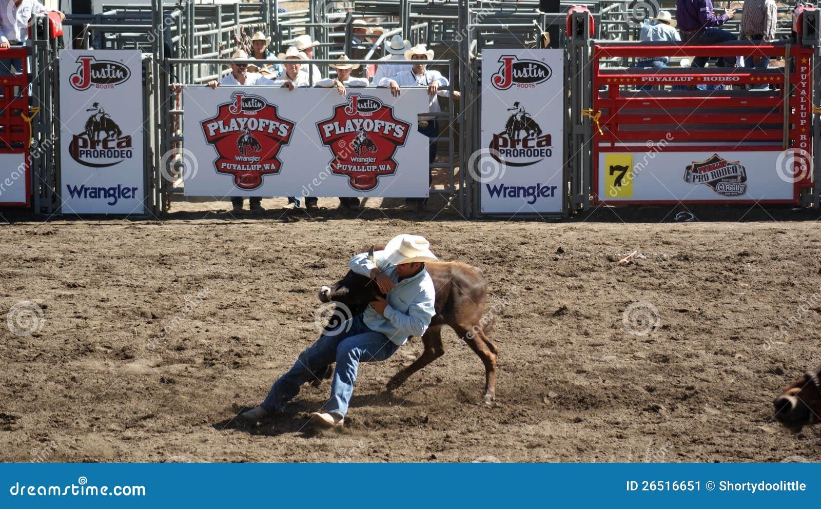 Cowboy que wrestling um boi