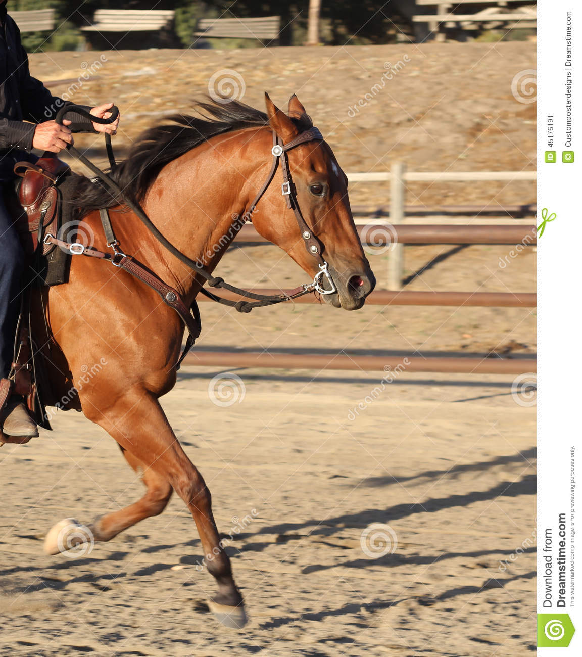 Download A Cowboy Riding His Horse In An Arena. Stock Image - Image of daytime, light: 45176191