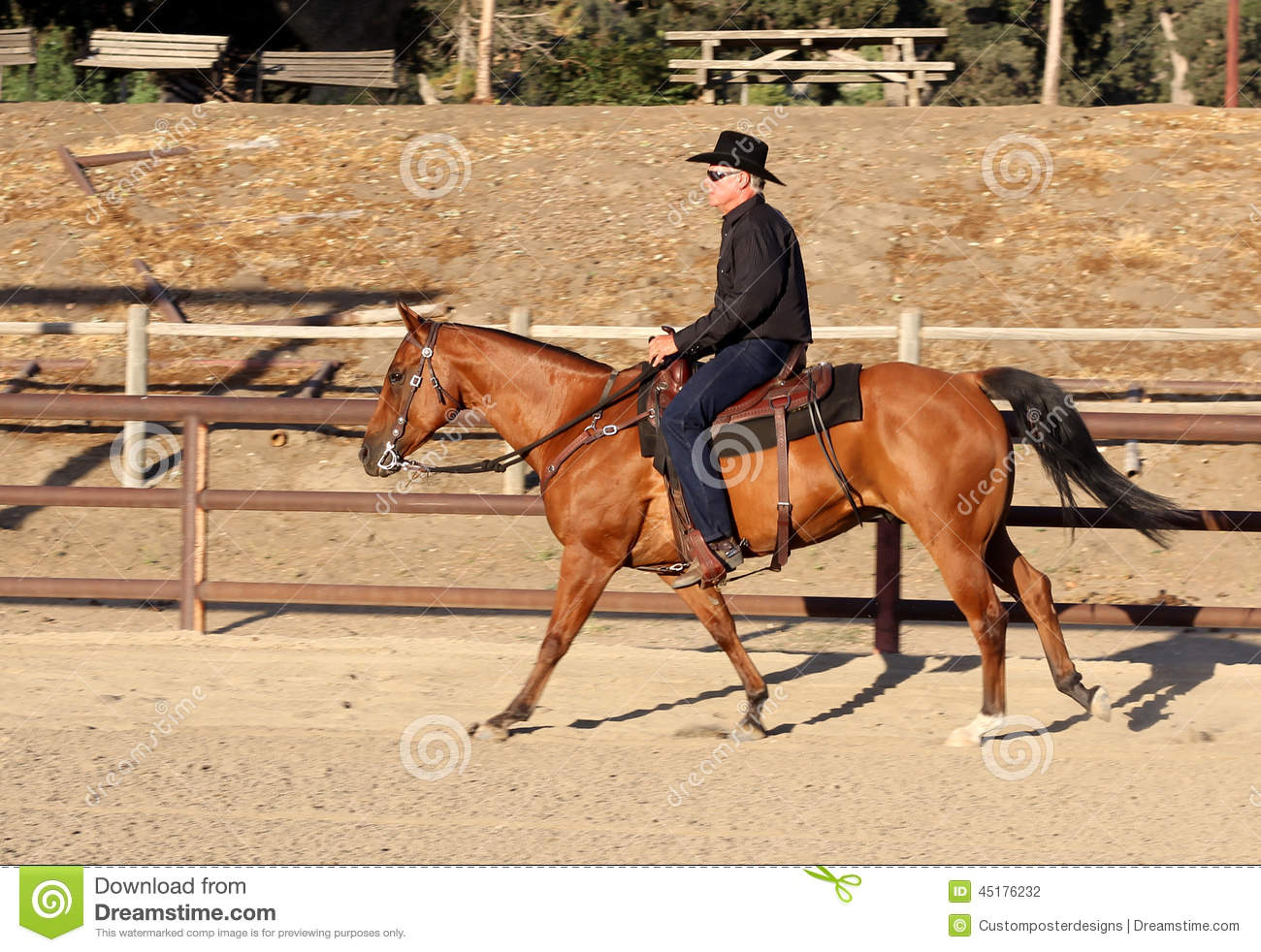Download A Cowboy Riding His Horse In An Arena. Stock Photo - Image of reining, drama: 45176232