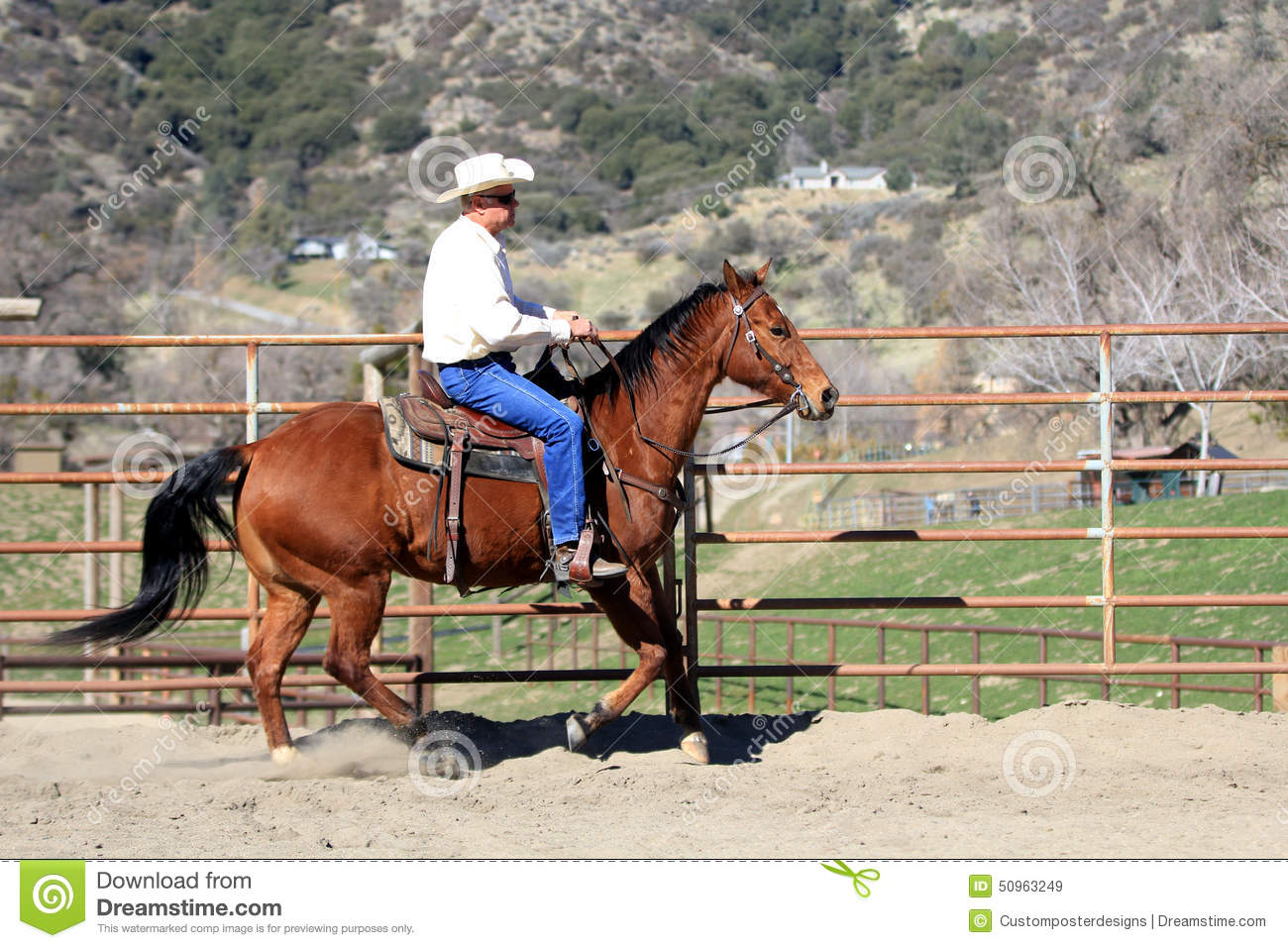 Download A cowboy riding his horse. stock image. Image of photo - 50963249