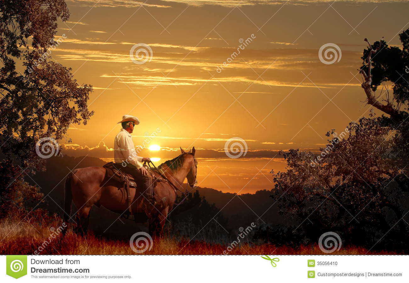 A cowboy riding on his horse VII.