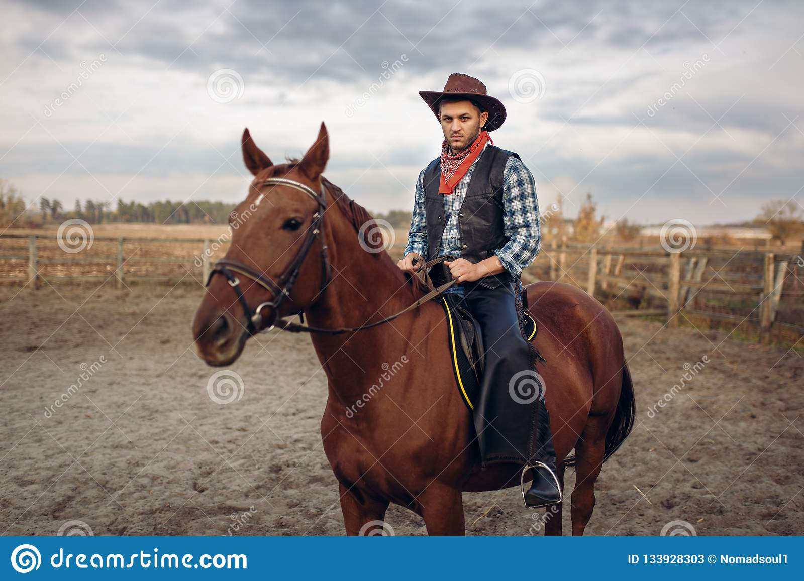 Cowboy Riding A Horse In Desert Valley Western Stock Image Image Of Revolver Riding 133928303