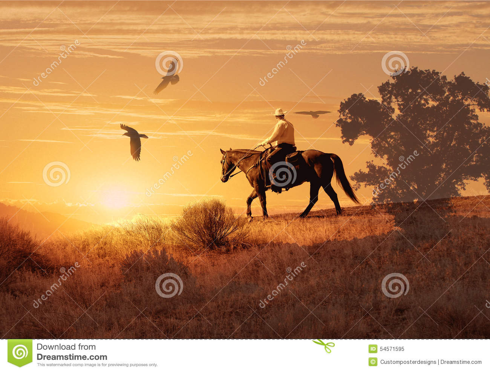 Cowboy riding on a horse.