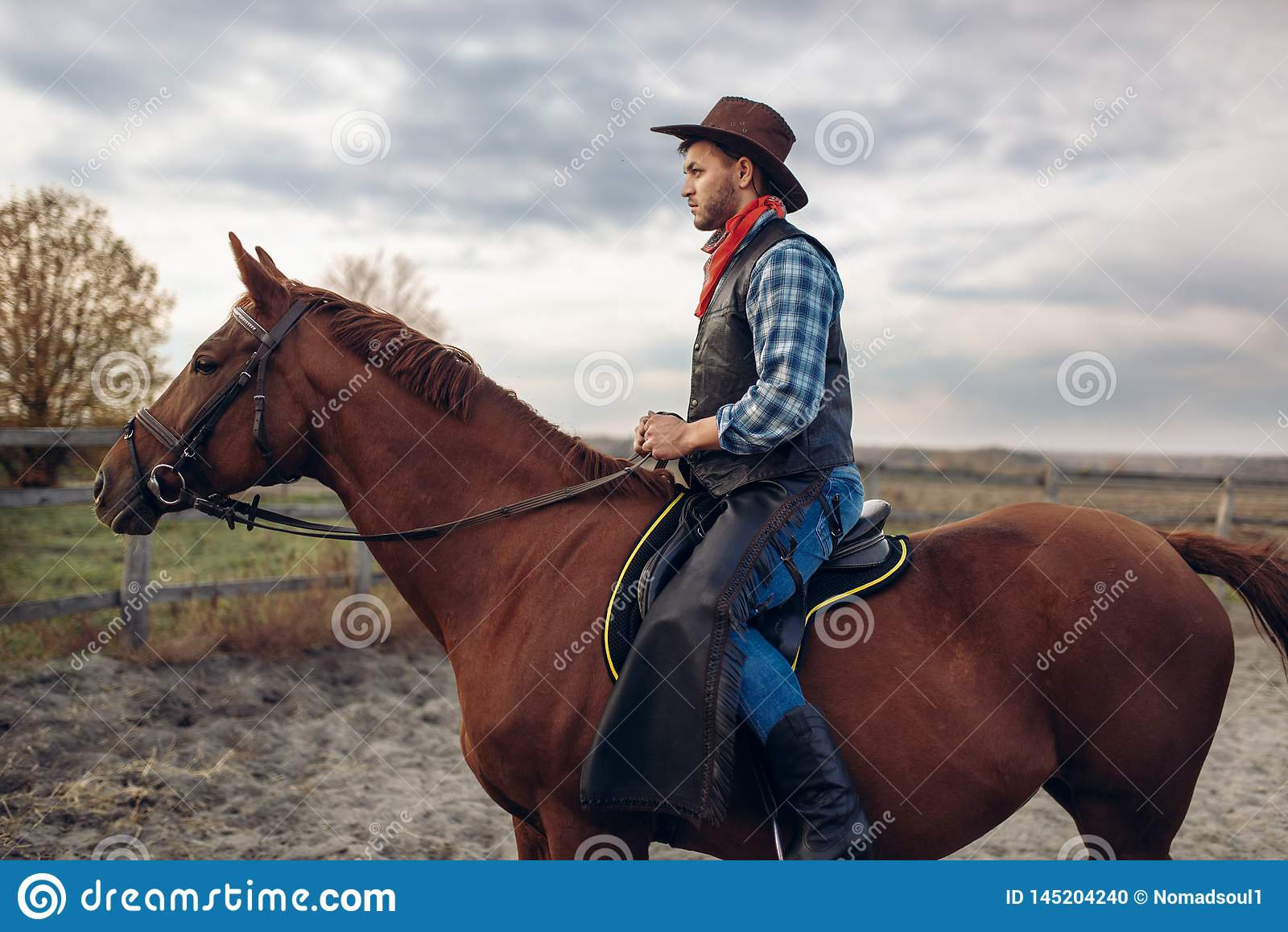 Cowboy Riding A Horse On Texas Farm Stock Photo Image Of Rider Nature 145204240