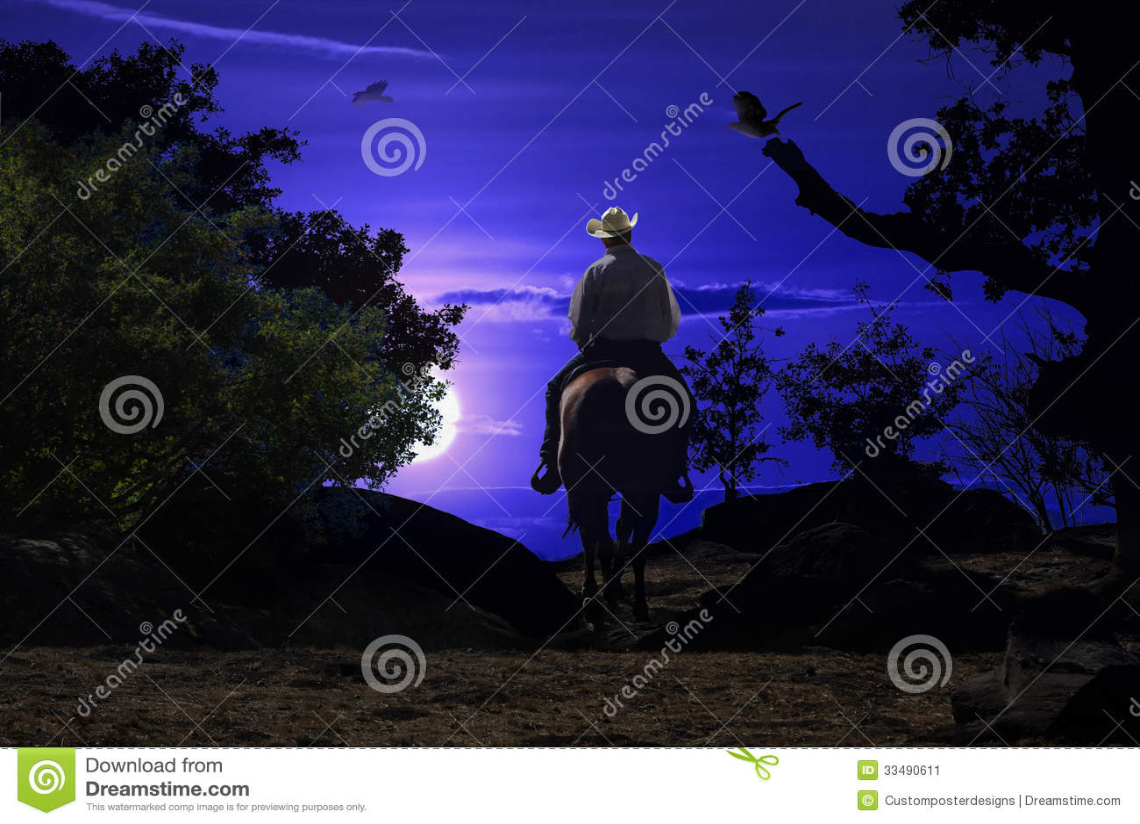Cowboy riding on a horse VI.