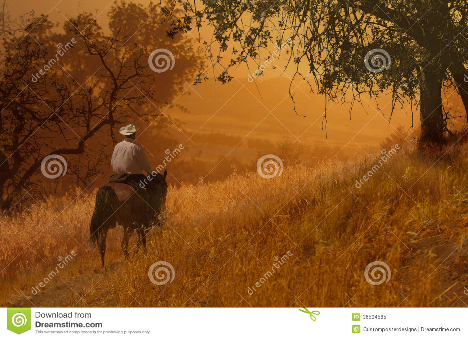 A cowboy riding a horse VIII.