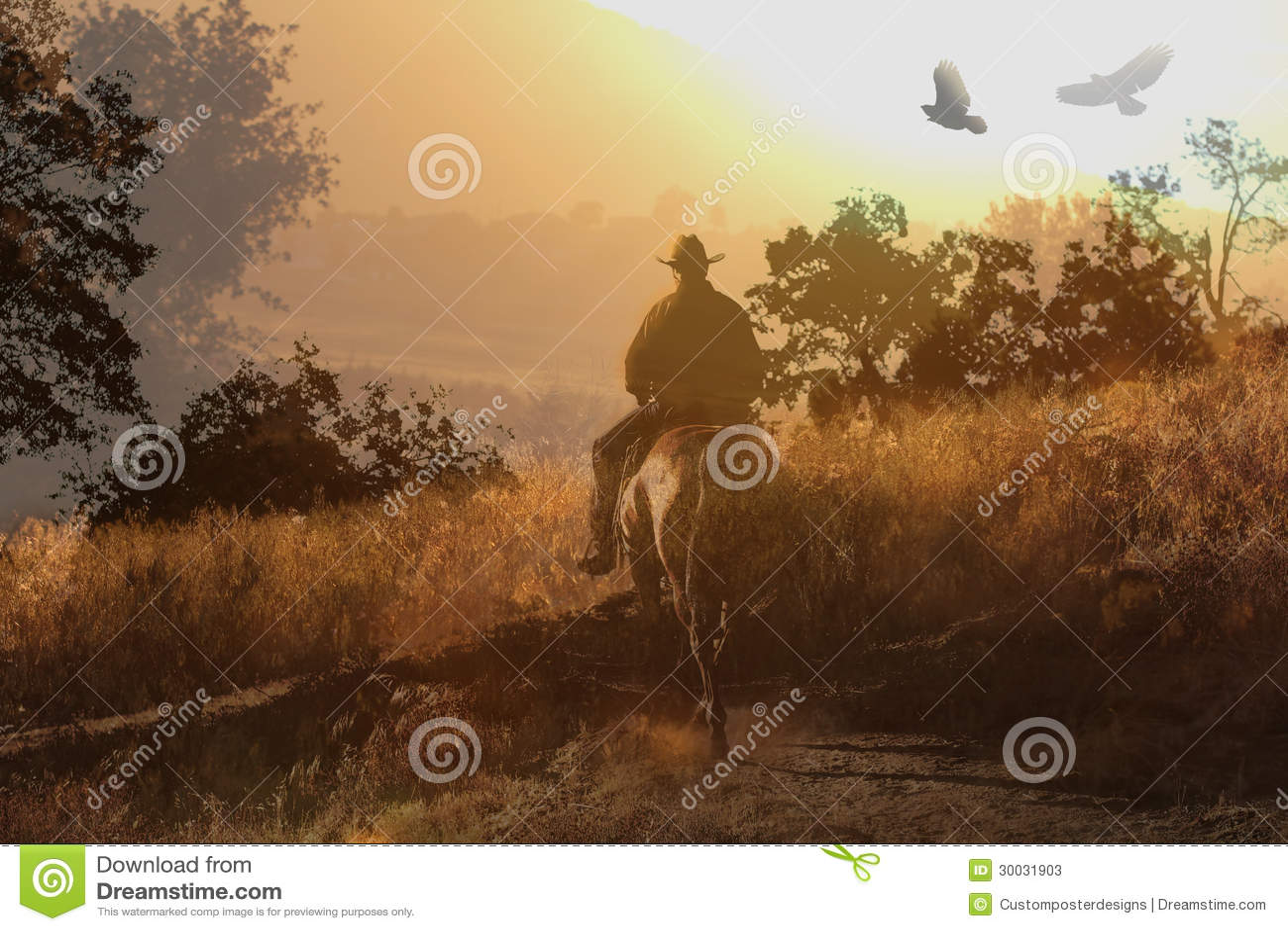 A cowboy riding a horse V.