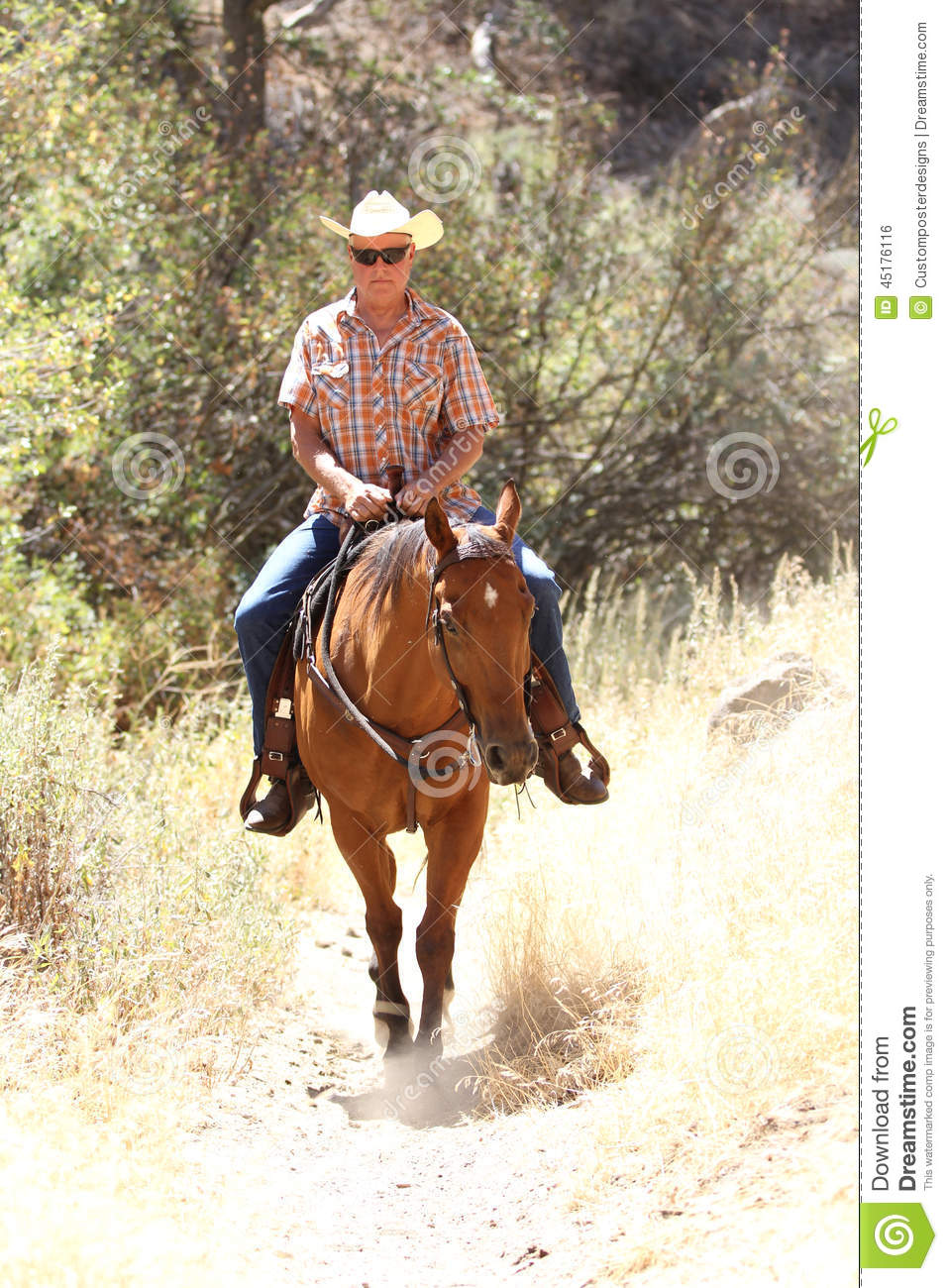 Download A Cowboy Riding In A Meadow With Trees Up A Mountain. Stock Photo - Image of hoof, bright: 45176116