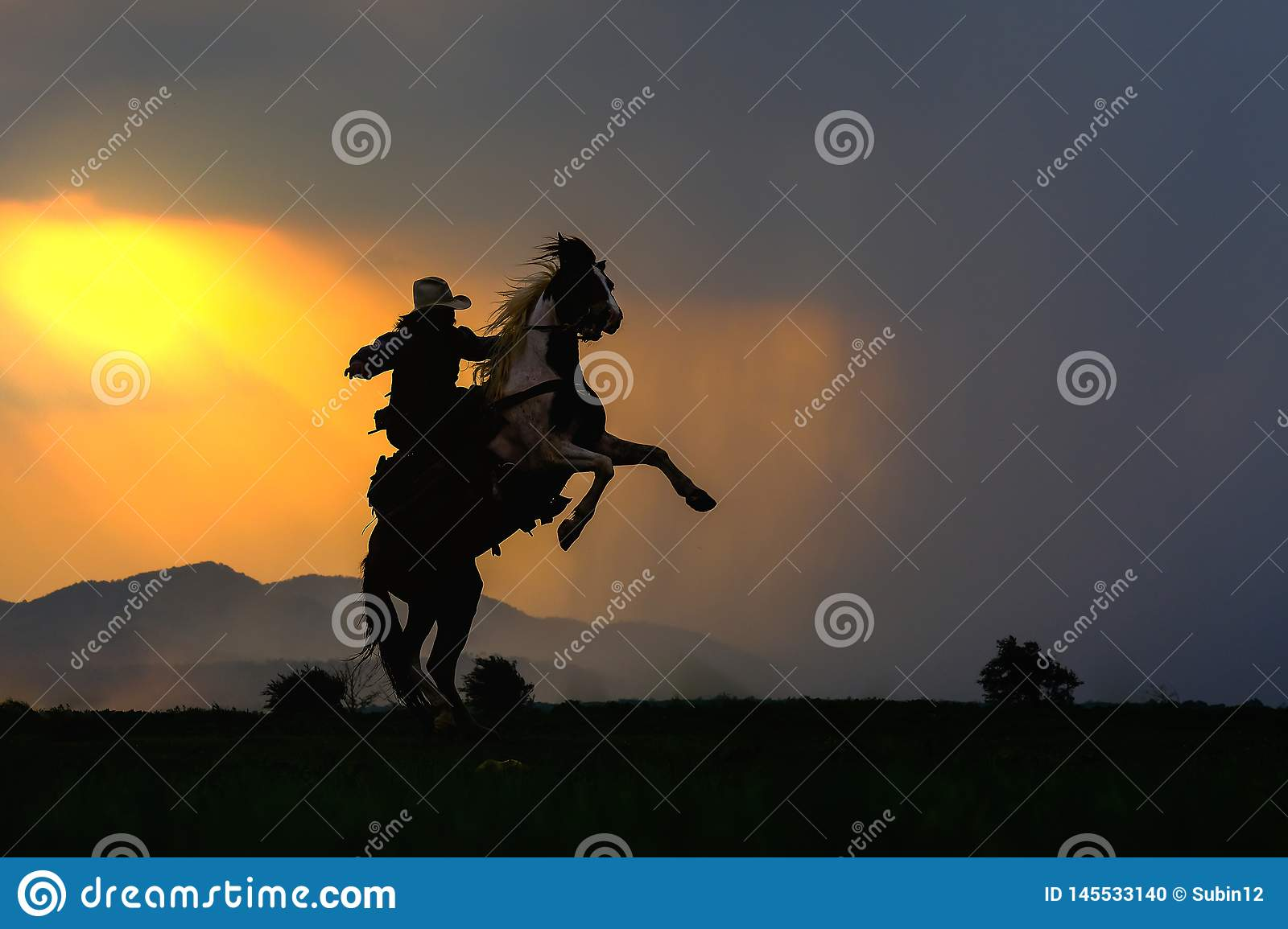 Cowboy silhouette on horse during nice sunset