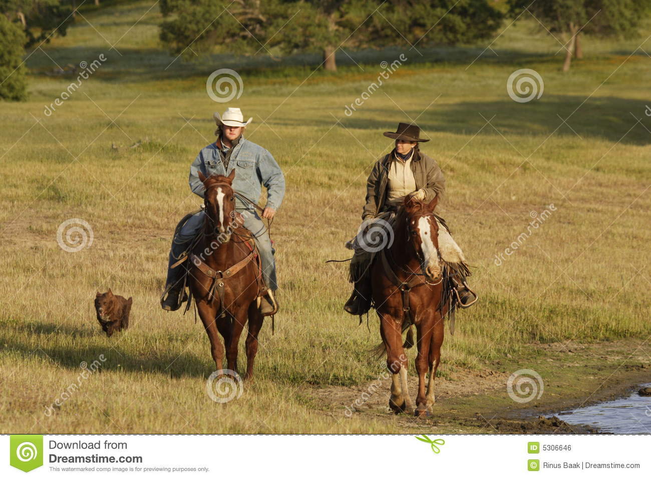 Cowboy su a cavallo fotografia stock immagine di for Ranch occidentale