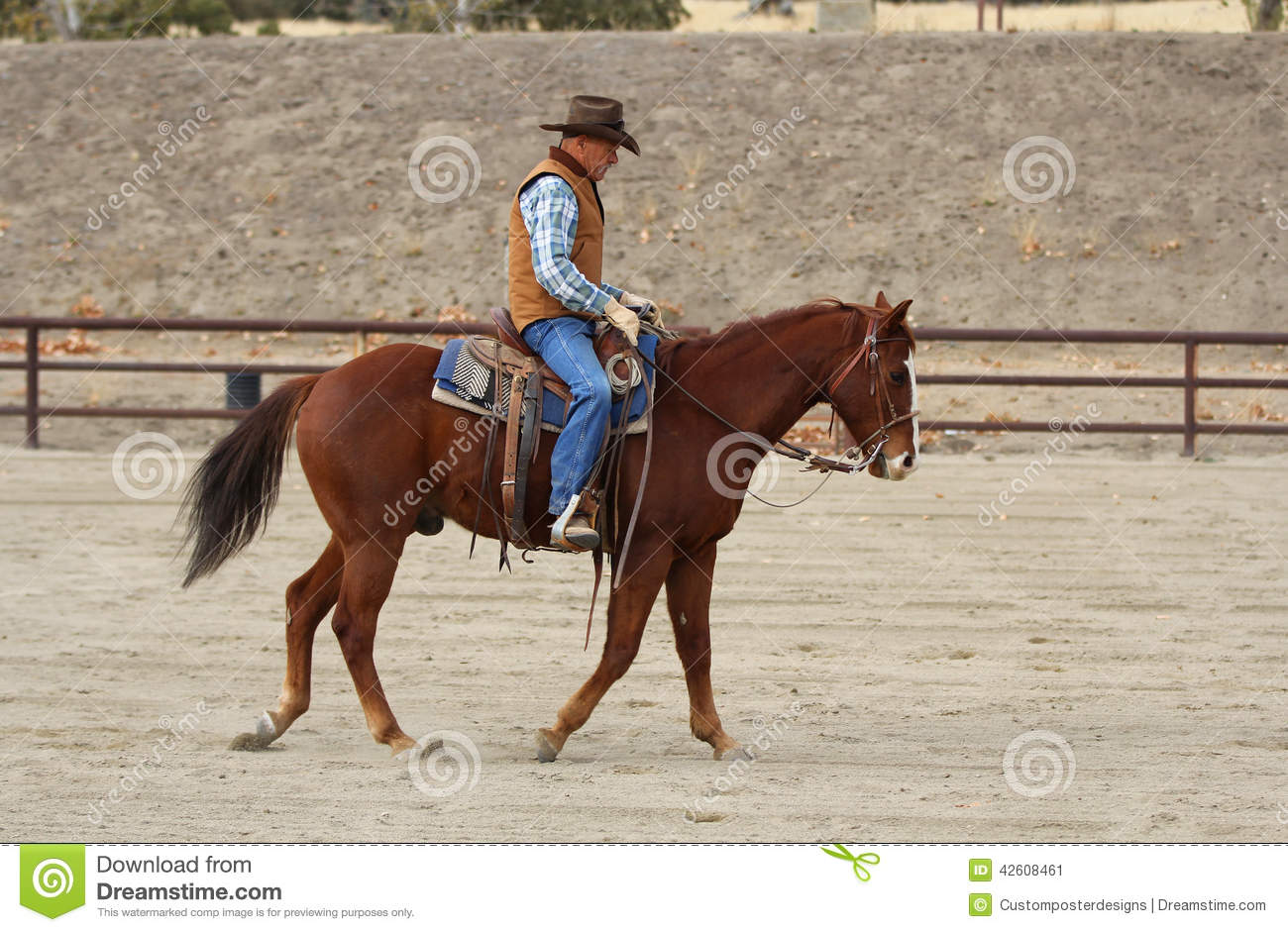 Download A Cowboy Warming Up His Horse. Stock Image - Image of format, hooves: 42608461