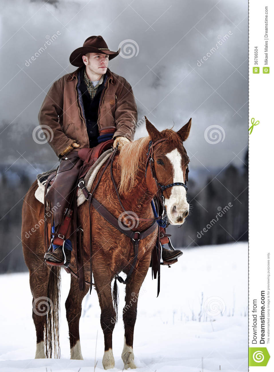 The Cowboy Way Editorial Stock Image Image Of Cowboy