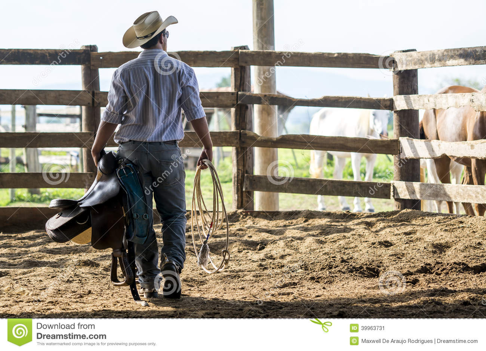 Cowboyaufpassen