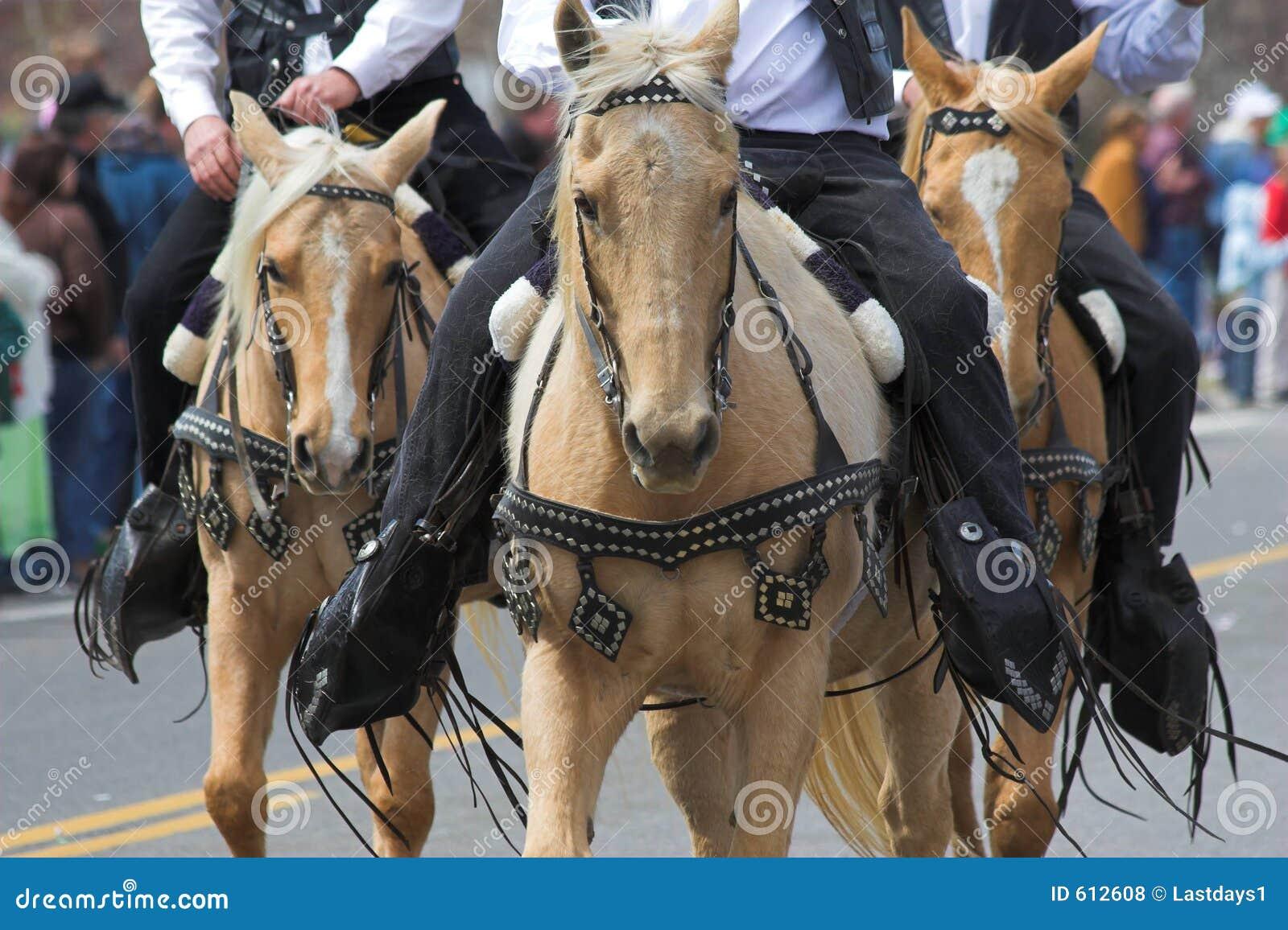 Cowboys & paarden 2