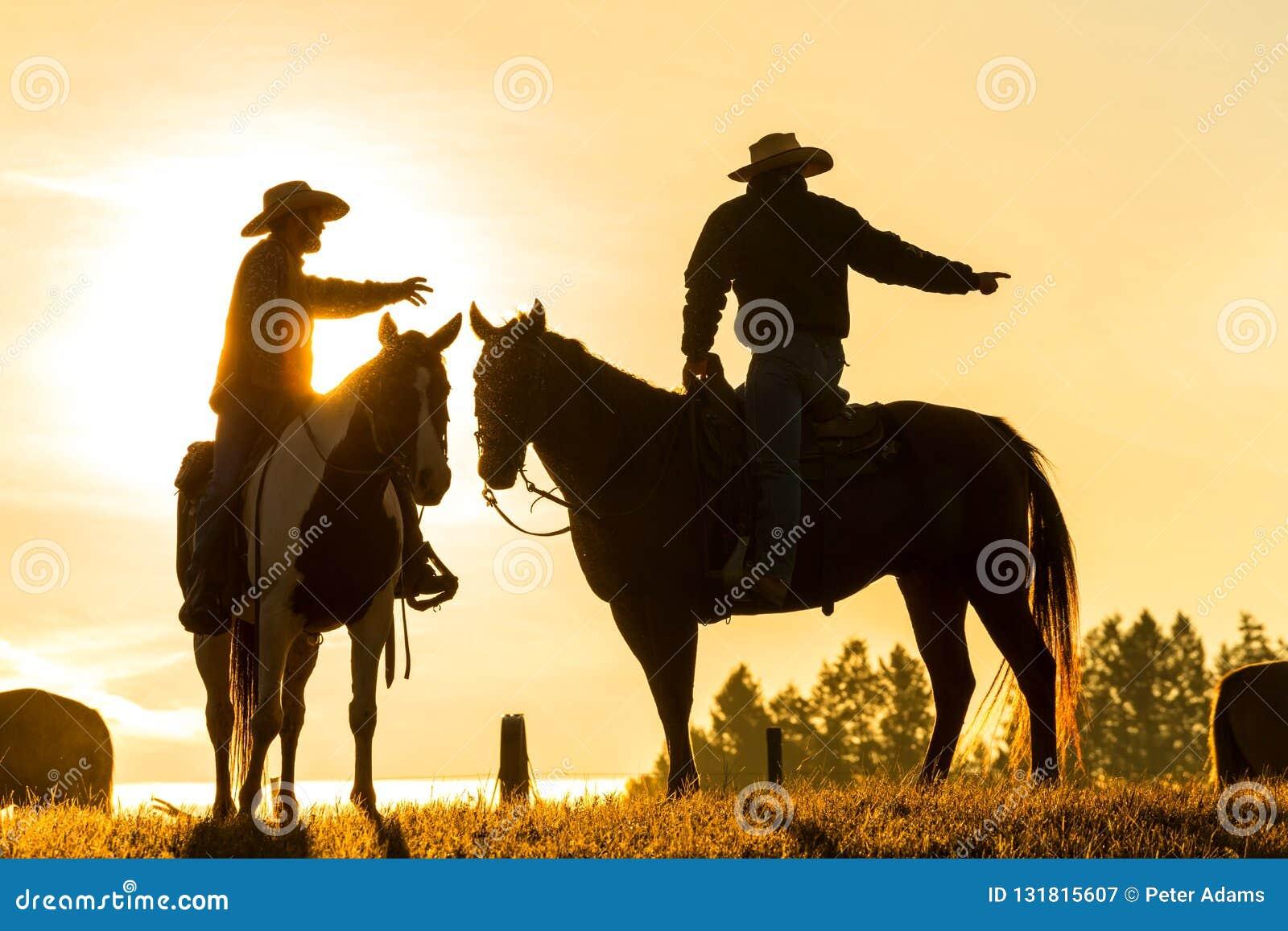 Cowboys auf Pferden bei Sonnenaufgang, britisches Kolumbien, Kanada