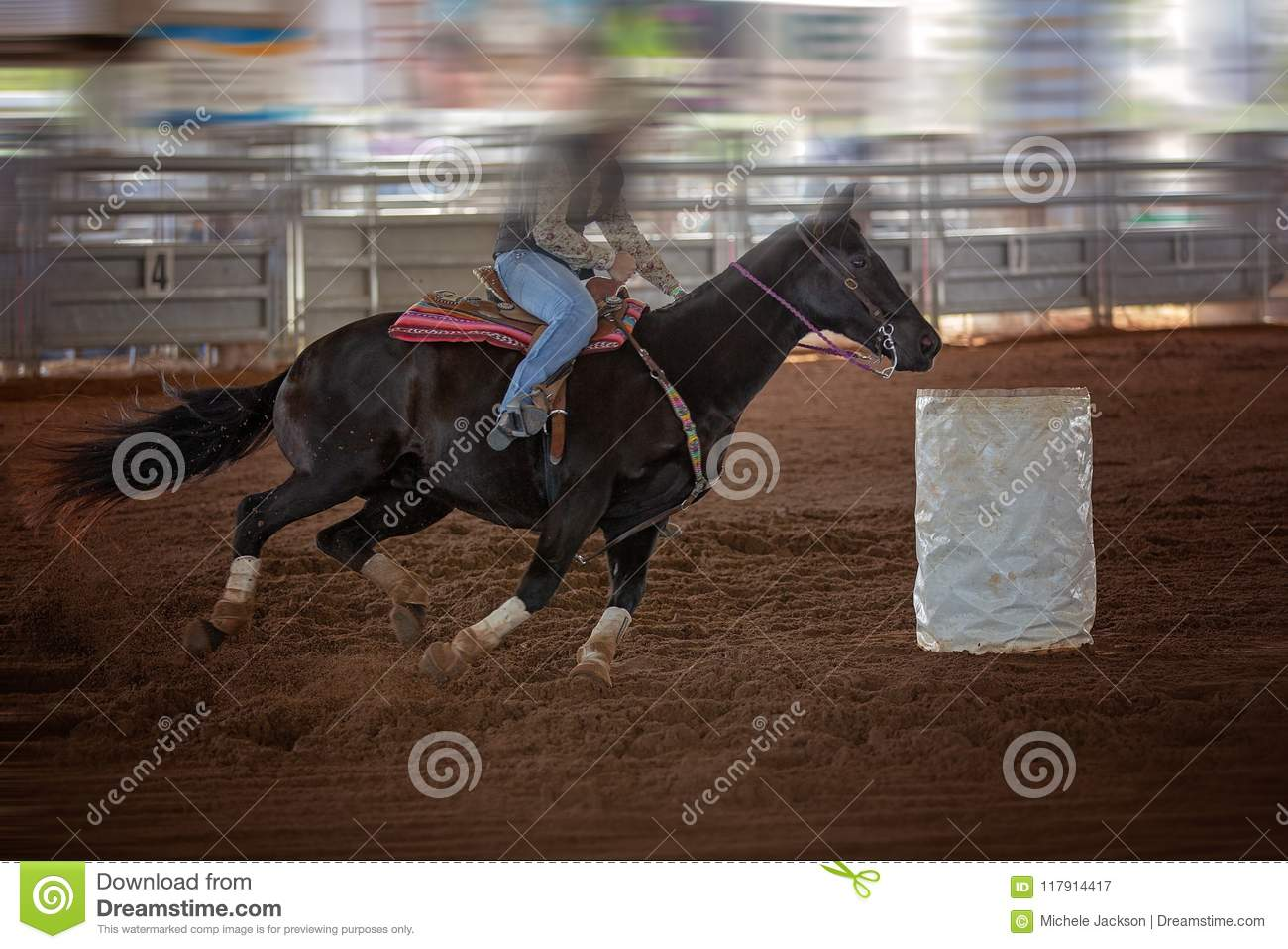 Cowgirl Rides Horse At Speed In Rodeo Barrel Racing Competition