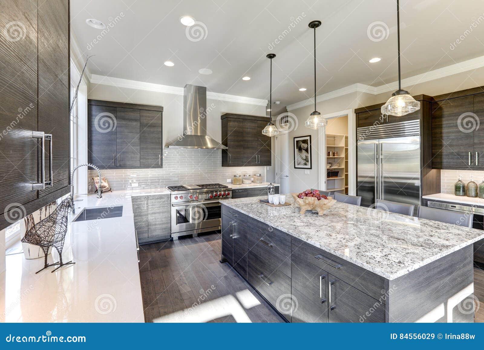 A Cozinha Cinzenta Moderna Caracteriza A Obscuridade Arm Rios