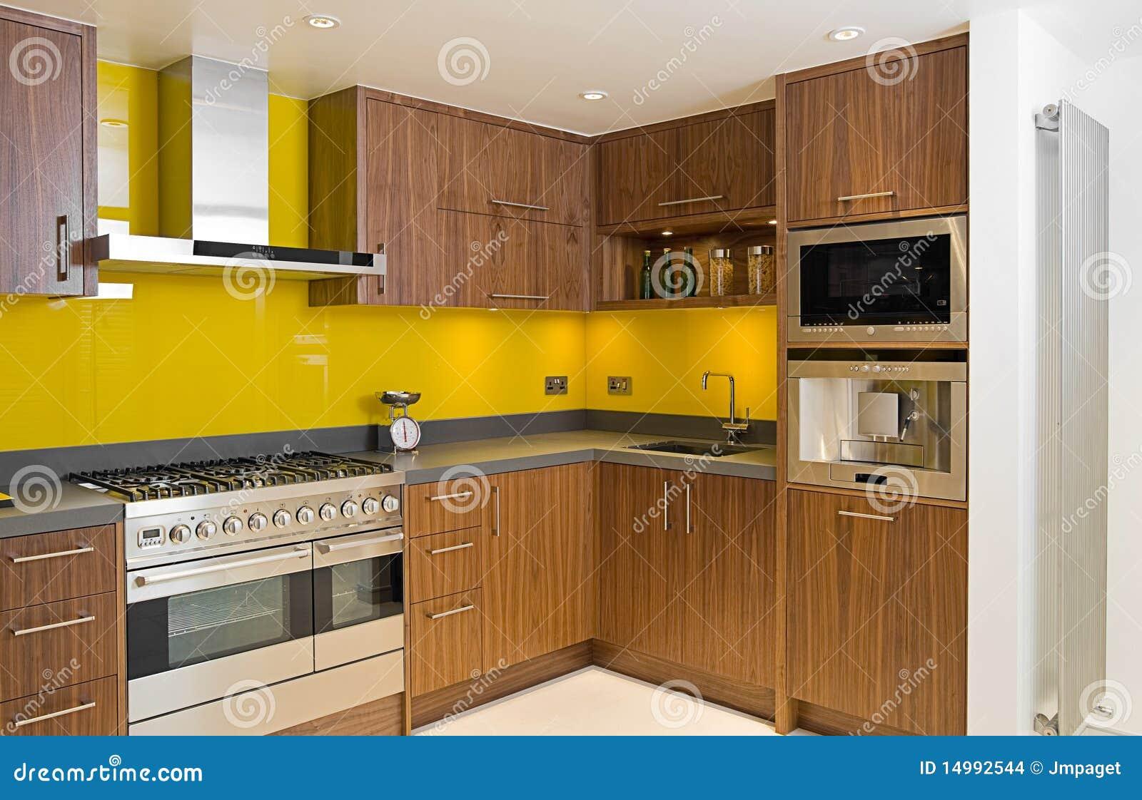Cozinha contemporânea brandnew da noz