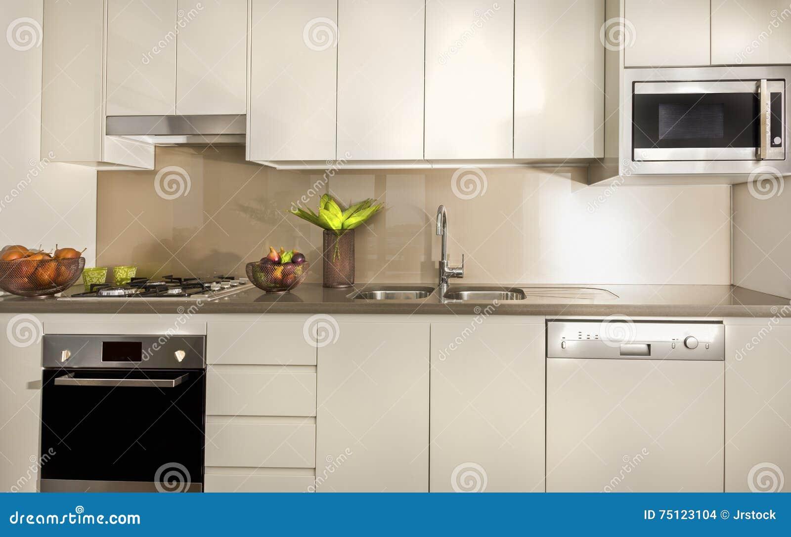 Cozinha moderna com armários da despensa e parte superior contrária