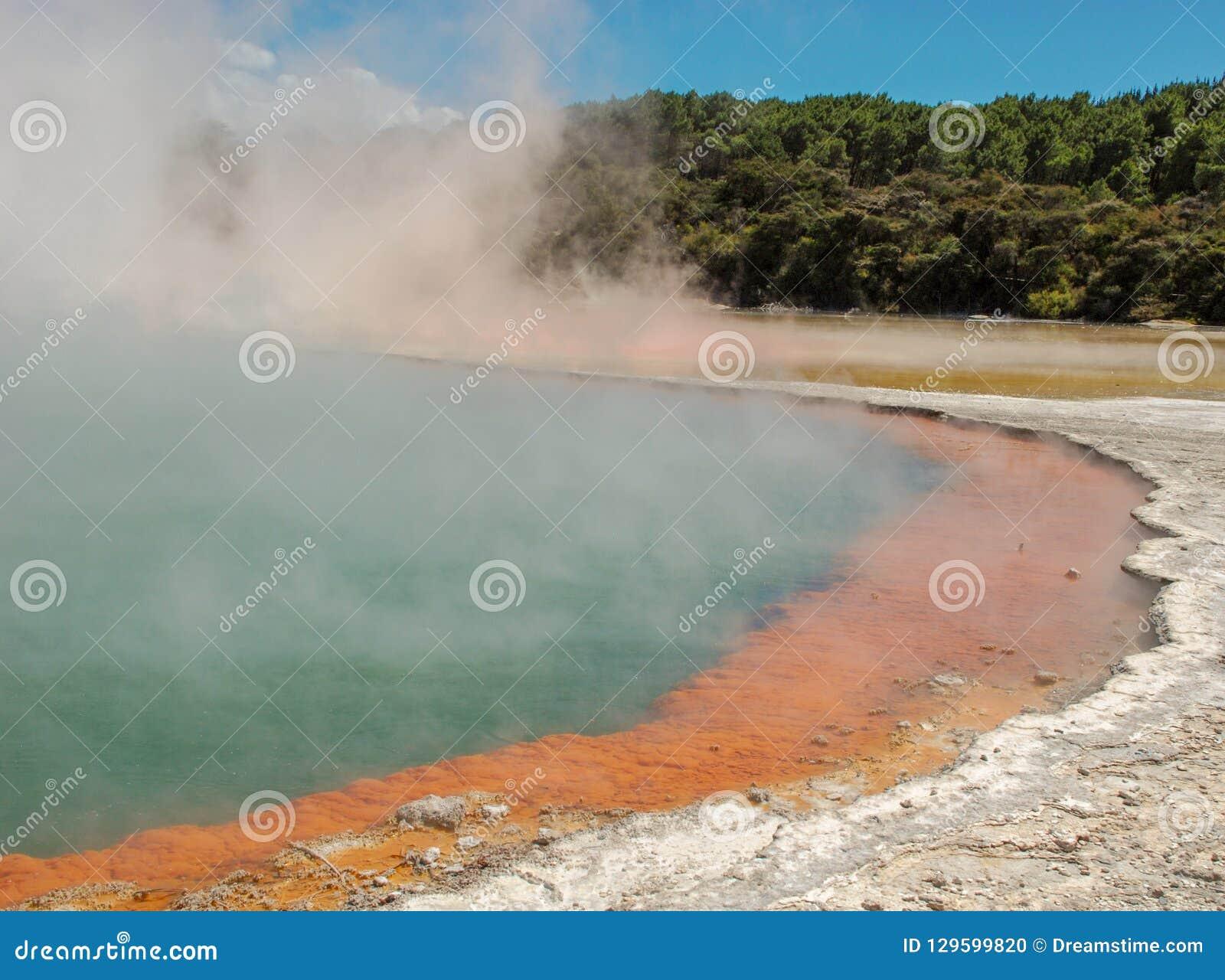 Cozinhando Rotorua Hot Springs, Nova Zelândia Hot Springs amarelo e azul com o vapor que aumenta, árvores no fundo