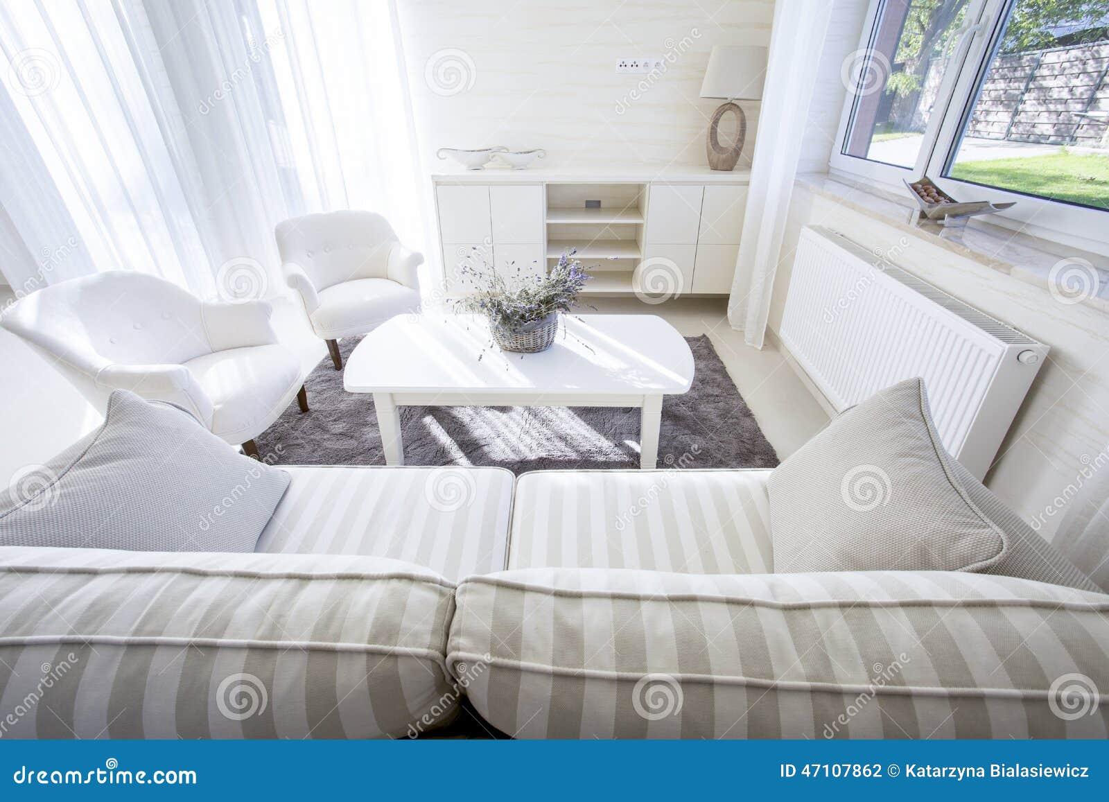 The cozy and elegant living room stock photo image 47107862 - Cozy elegant living rooms ...