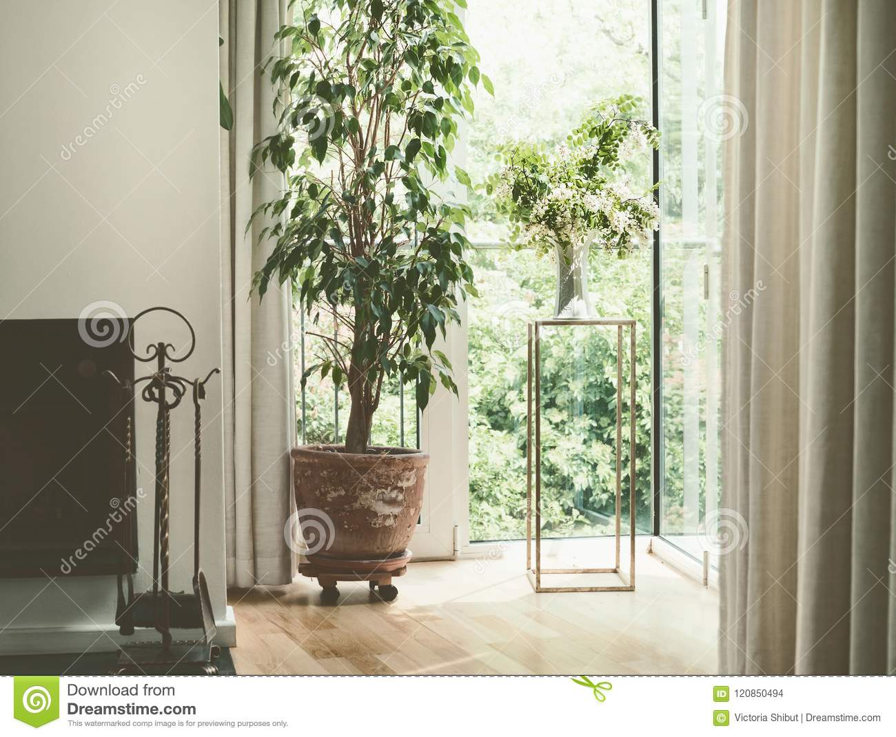 Cozy Home Interior Design With House Plants At Window Living Room