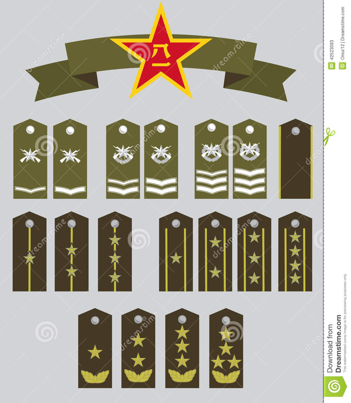 CPA Military Ranks And Star Stock Vector - Image: 42523093