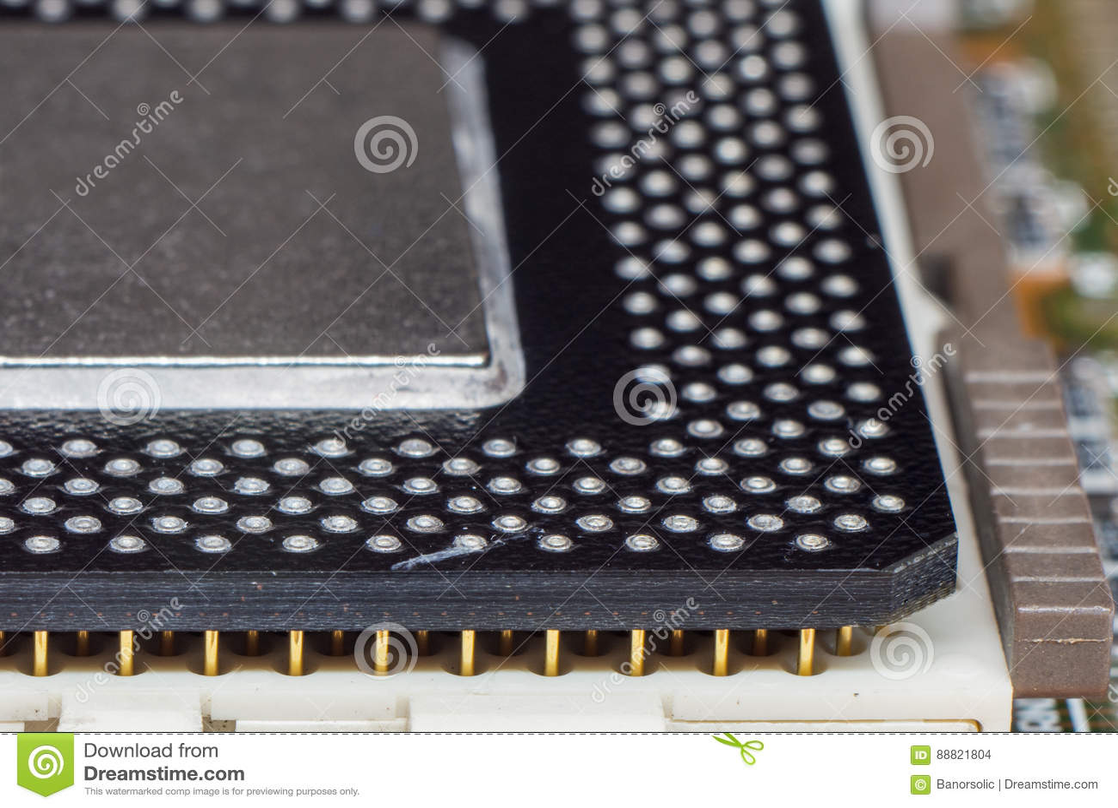 Cpu-CPUmicrochip in contactdoos wordt geïnstalleerd die