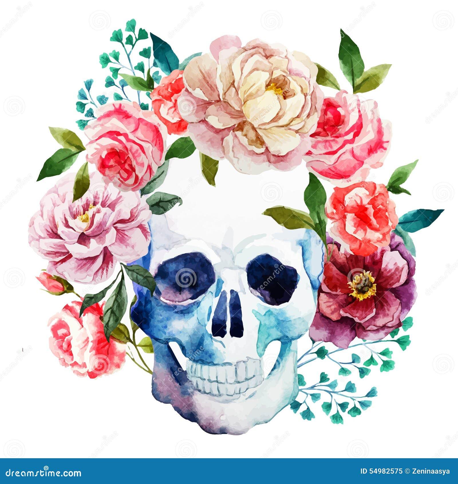 Cráneo de la acuarela