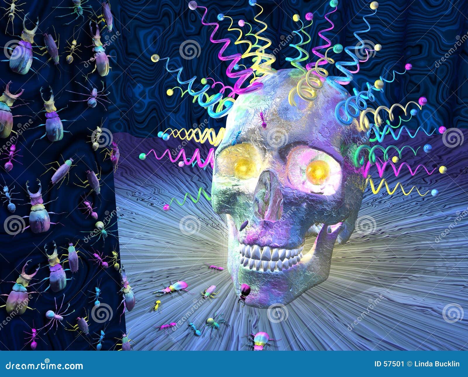 Cráneo e insectos psicodélicos