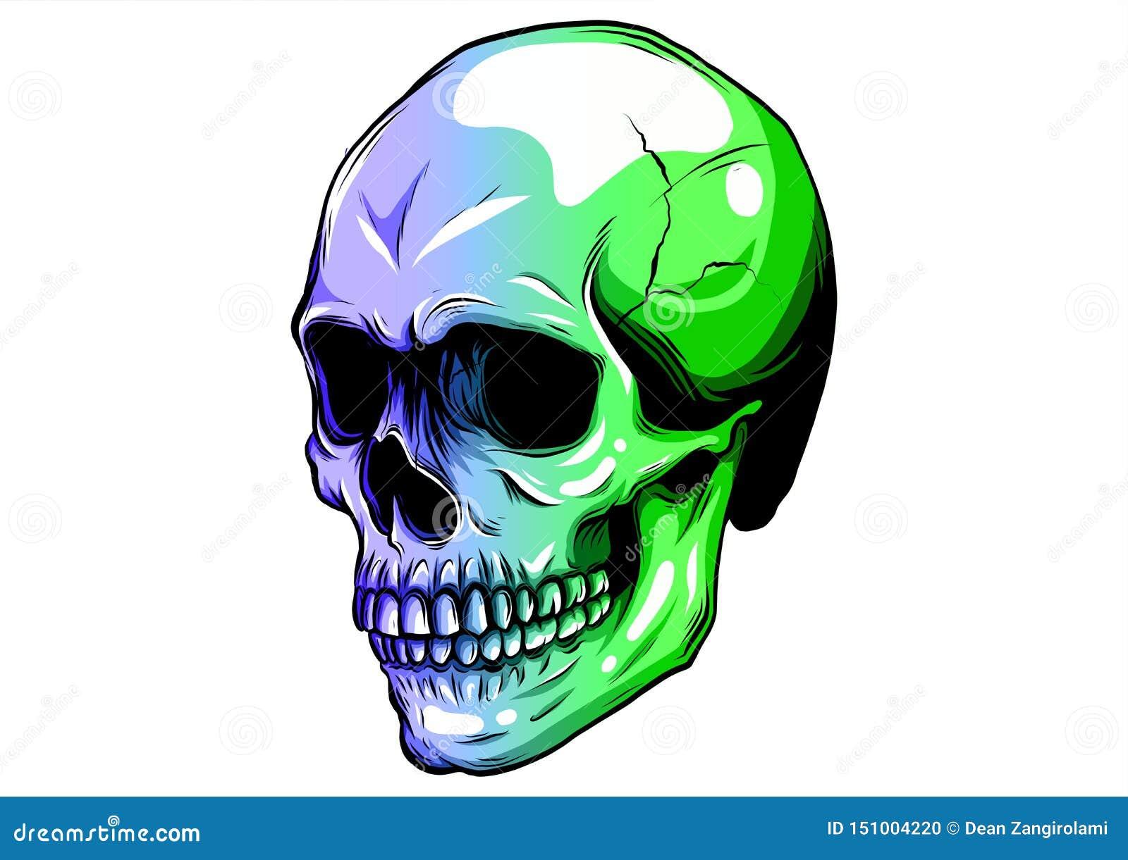 Cráneo en diseño del ejemplo del vector de la pintura del color